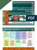 26regimen.pdf