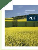 Biofuels Barometer 2010