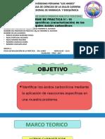 Funcional Informe Nº 10