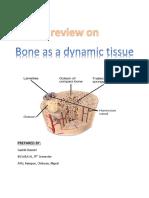 Bones as a Living Dynamic Tissue