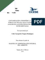 TESIS - Vázquez Domínguez Celia Concepción