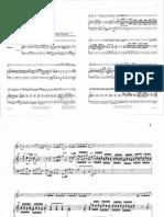 Rathgeber Concerto 19.pdf