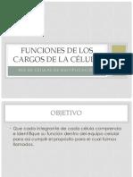 Funciones de Los Cargos en La RCM