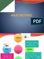 ARACNEÍSMO.pptx