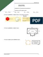 FT1 Perímetros e Áreas
