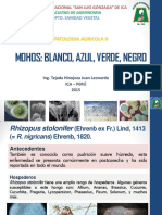 1 Mohos 2015 (1).pdf