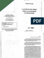Castele de nisip, Daniel David.pdf