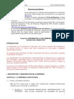 Estructura de Informe 09 Rev130313