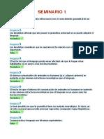 Seminarios RevisadosPDF