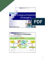 1. Introdução Ao Metabolismo e Bioenergética