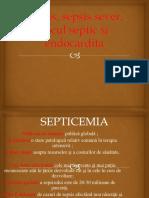 Septicemia