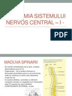 ANATOMIA SISTEMULUI NERVOS CENTRAL.pptx