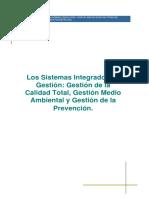 OHSAS_tema_8.pdf