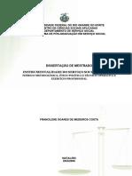 INSTRUMENTALIDADE DO SSO DISSERTAÇÃO MESTRADO.pdf