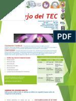 5. Manejo Del TEC