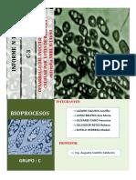 Informe Final de Bioprocesos c 3 Final