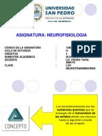 Clase 4 - Los Neurotransmisores (1)