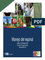 Manejo Del Espinal