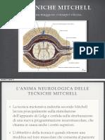 TECNICHE MITCHELL.pdf