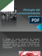 Etiología Del Comportamiento Infractor