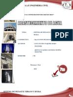 SISTEMAS-DE-DESAGUES-URBANO-Y-RURAL.docx
