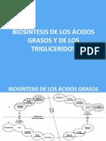 26780139 Biosintesis de Los Acidos Grasos y de Los Trigliceridos