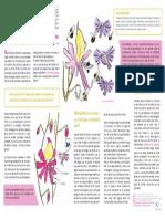 Paper Schizanthus