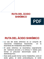 19 Farmacognosia Biosintesis Shikimico