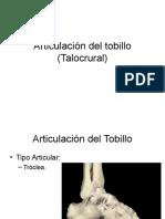 Articulación Del Tobillo (Talocrural) (1)