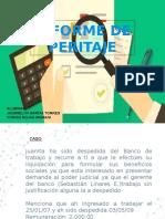 peritaje-informe-1