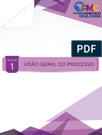 Modulo1_VisaoGeraldoProcesso