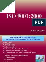Requisitos 9001 Para Los Chicos
