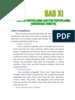 Xi)Kultur Protoplasm A Dan Hibridisasi Somatik