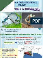 CAP. I Entomología Introducción