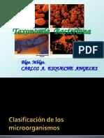 Taxonomia y Clasificacion Bacteriana