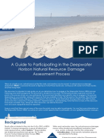 A Guide to Participating in the Deepwater Horizon Natural Resource Damage Assessment Process