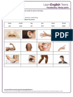 body_parts_-_exercises.pdf