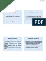 Anatomia Básica - Articulações Ou Junturas 05.03.2014