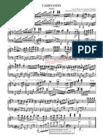 Caminando-PartiturayLetra.pdf