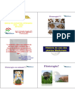 Fitoterapia Chinesa introd slides.pdf