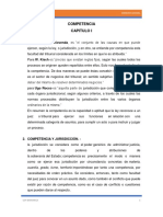 COMPETENCIA- USP - MEJORADO.docx