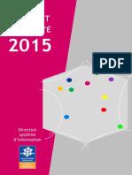 DSI_Rapport d'Activité 2015