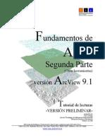 Fundamentos de ARCGIS 9.1