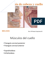 Miologia (1)