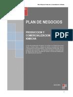 Plan-de-Negocios-Kiwicha-Talavera.pdf