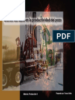 daño skinn pozos gas.pdf