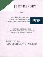 225_Industrial report IGOL.pdf