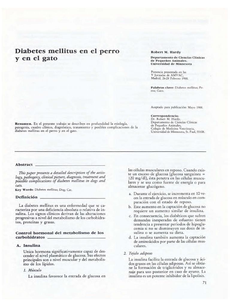 lti signos de diabetes