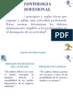 DEONTOLOGIA+DEL+AUDITOR+INFORMATICO+Y+CODIGOS+ETICOS
