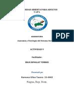 Anatomía y Fisiología Del Sistema Nervioso TAREA 5